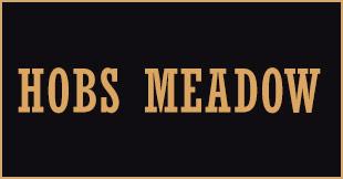 Hobs Meadow, Solihull